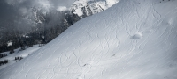 双板和单板滑雪