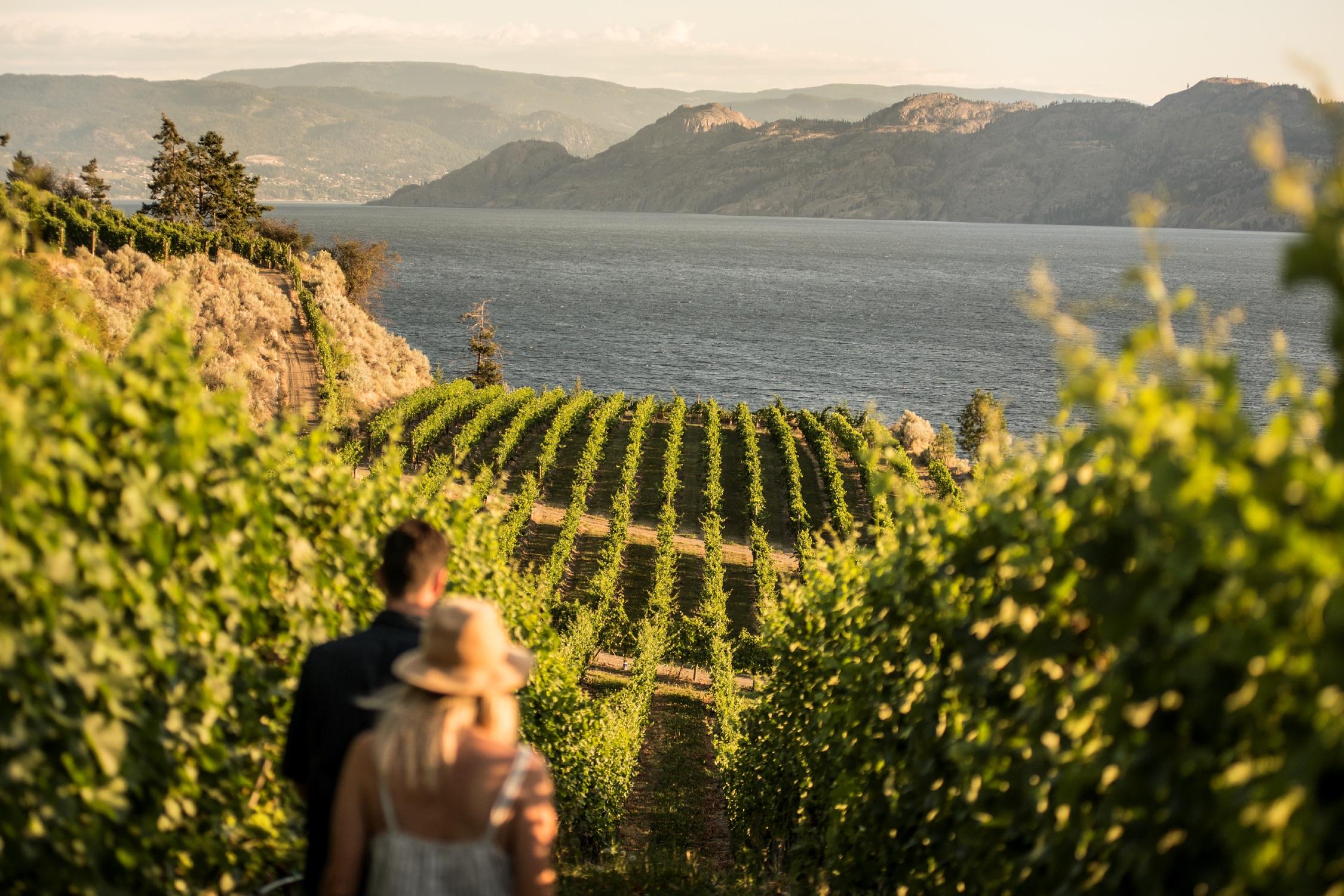 A young couple walks 户外冒险、品酒之旅和湖畔休闲