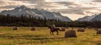 骑马和牧场